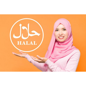 What requirements should halal products meet